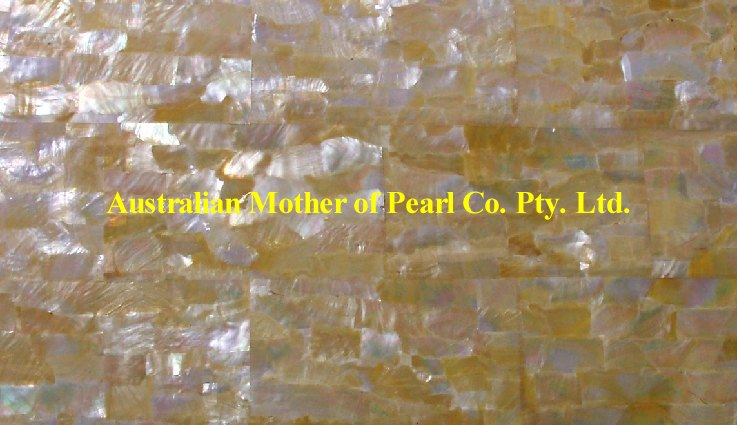 Gold Mother of Pearl panels