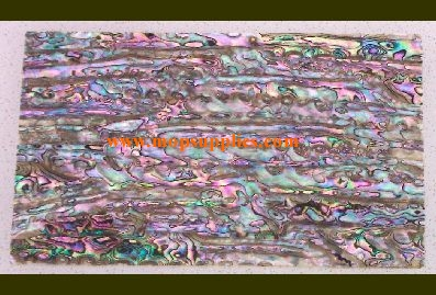 Green abalone glued sheet dark