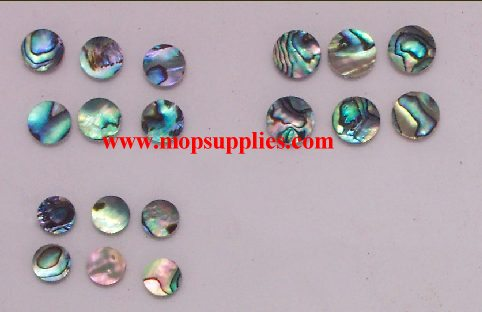 Paua Button Blanks